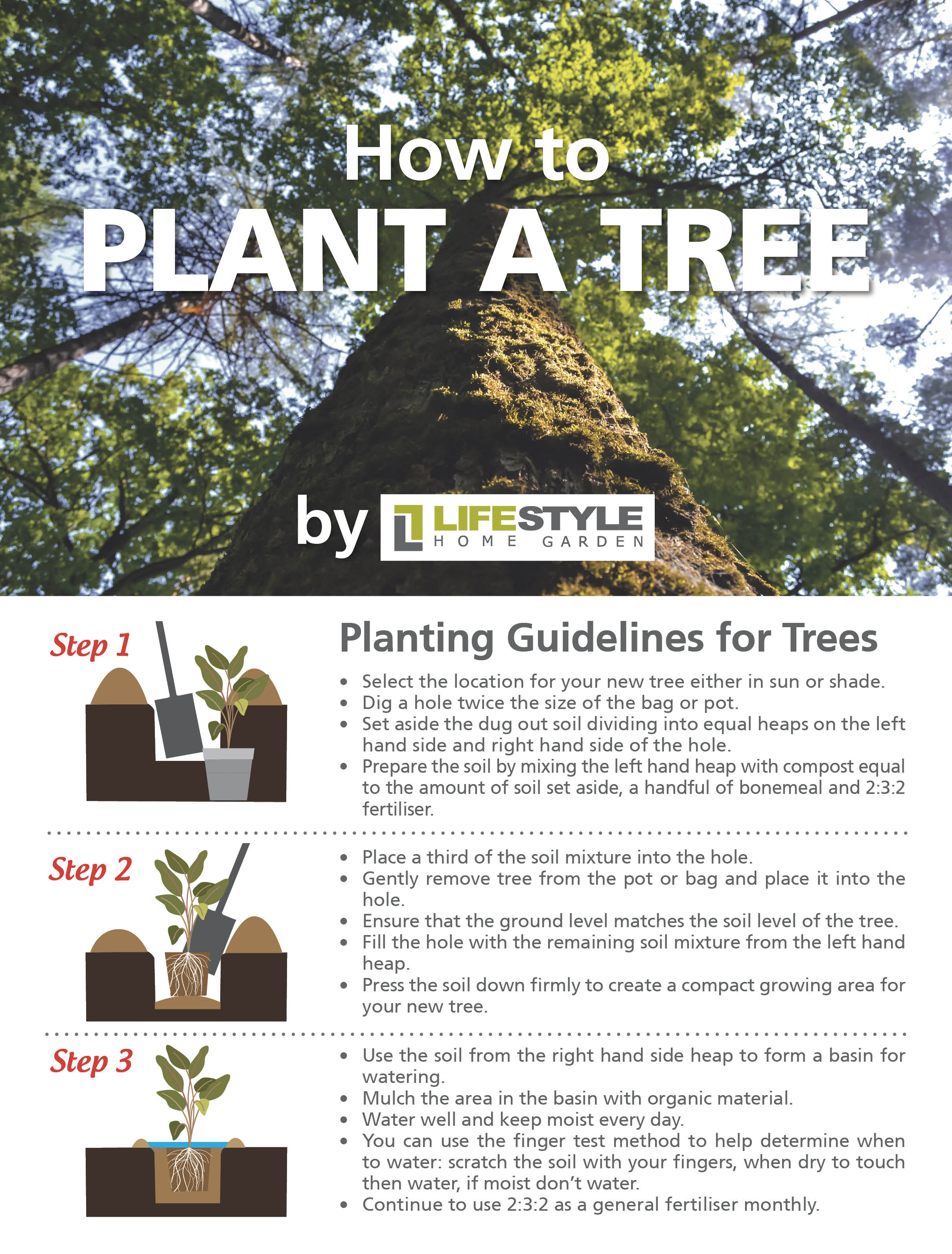 How to Plant a Tree by Lifestyle Home Garden, nursery and plant shop Johannesburg