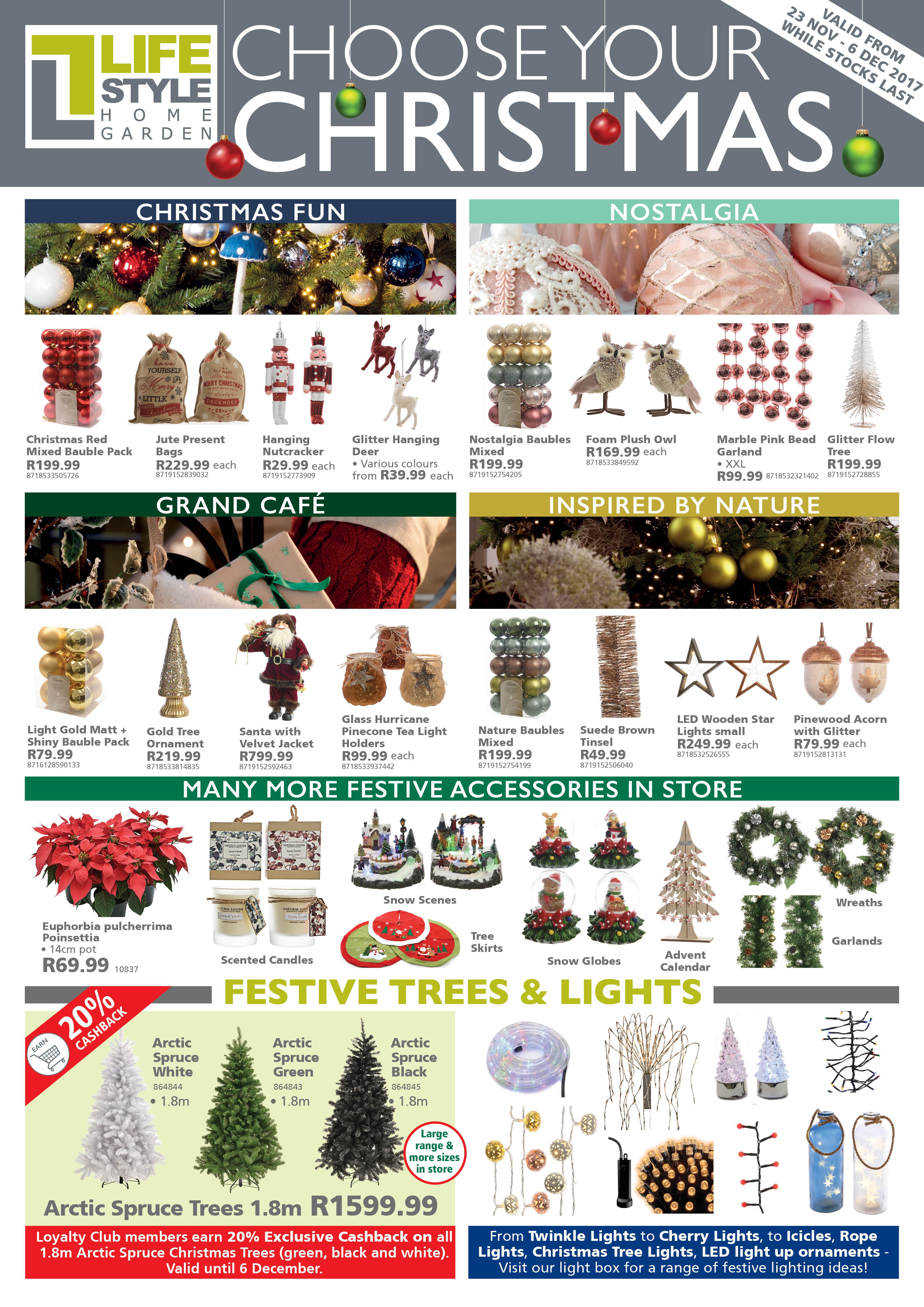 Gardening Specials Lifestyle Home Garden Nursery and Plant Shop Johannesburg