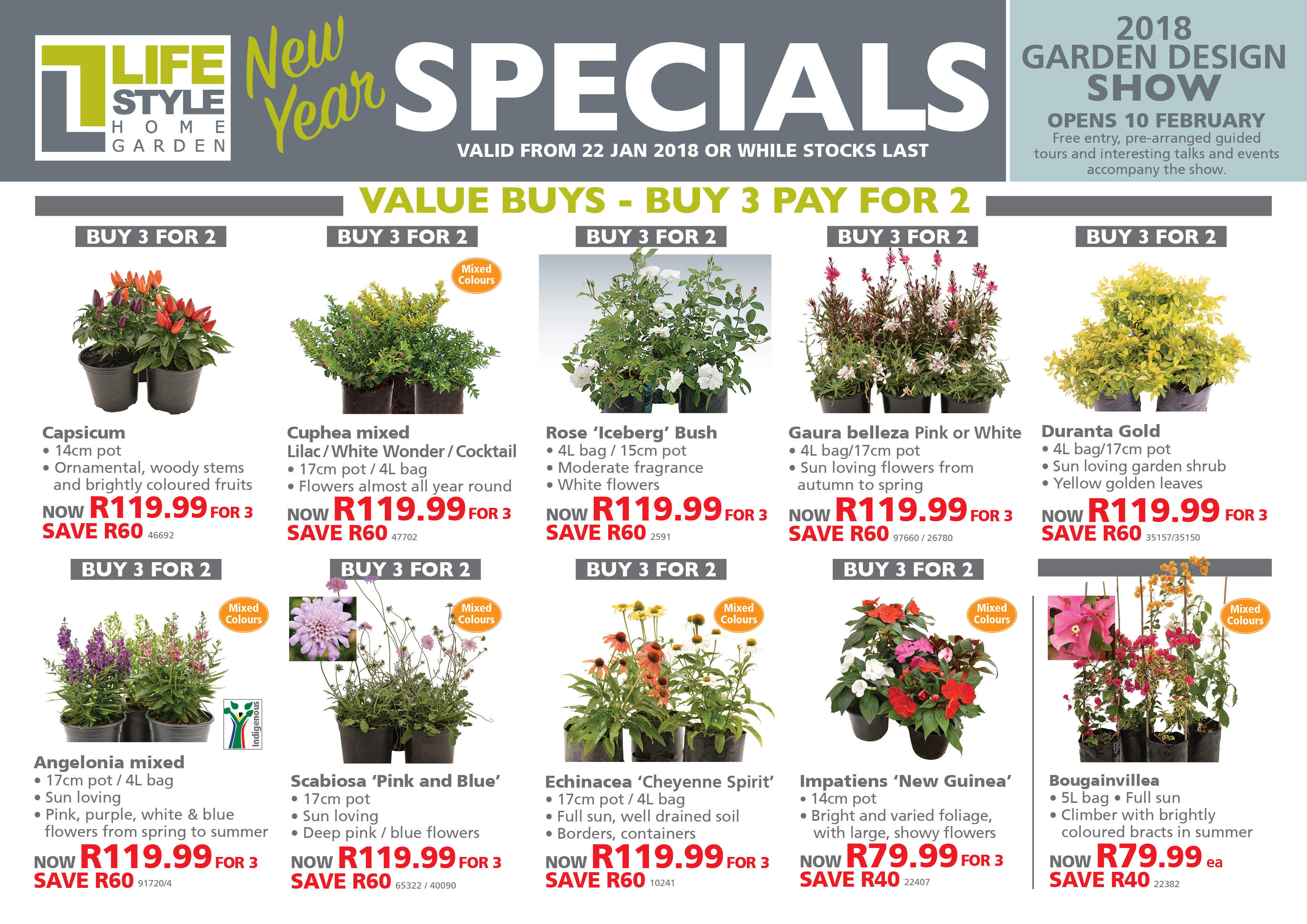 Gardening Specials Lifestyle Home Garden Nursery and Plant Shop