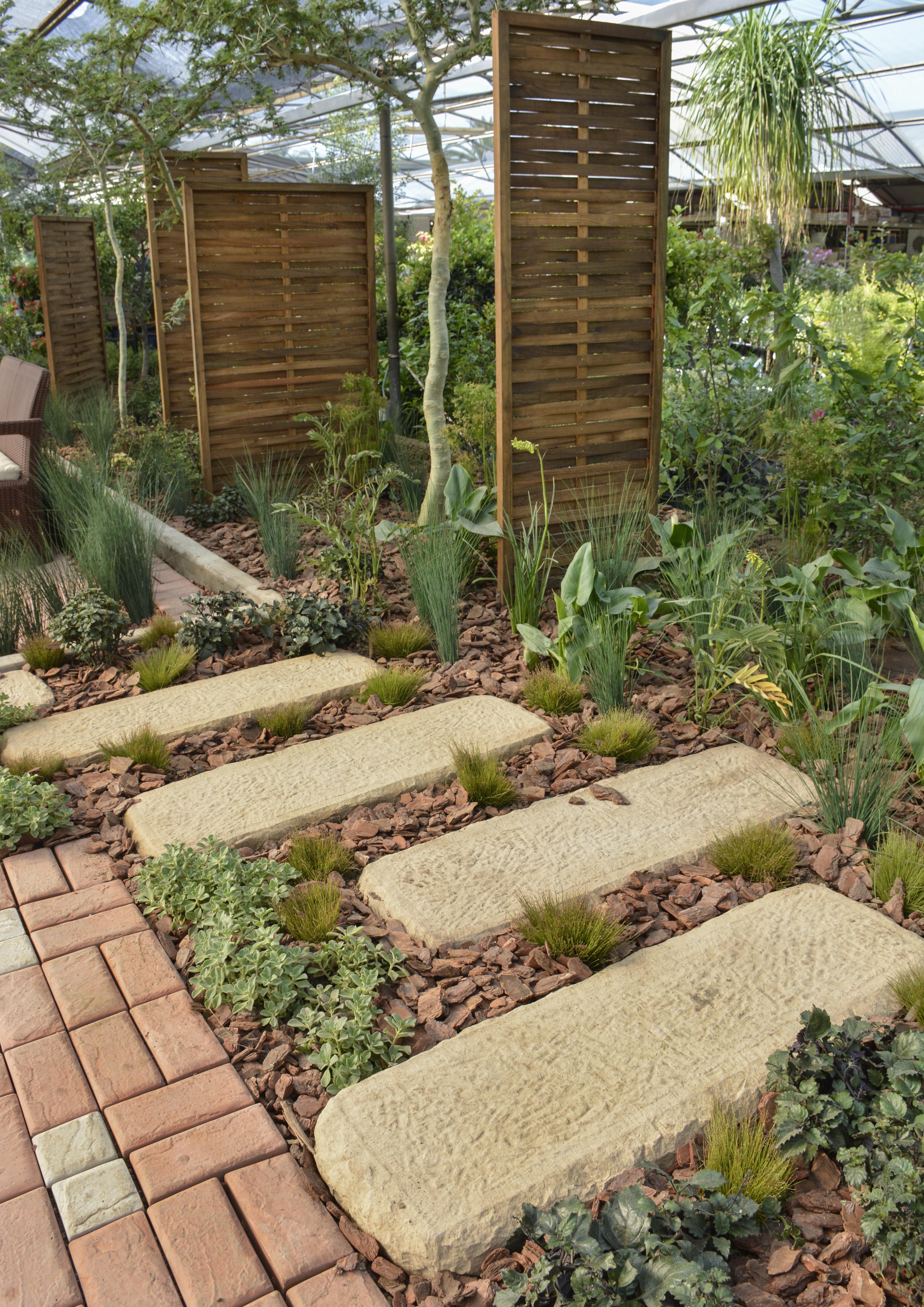 Fine Bog Garden Vignette - Brown Nature Garden ...