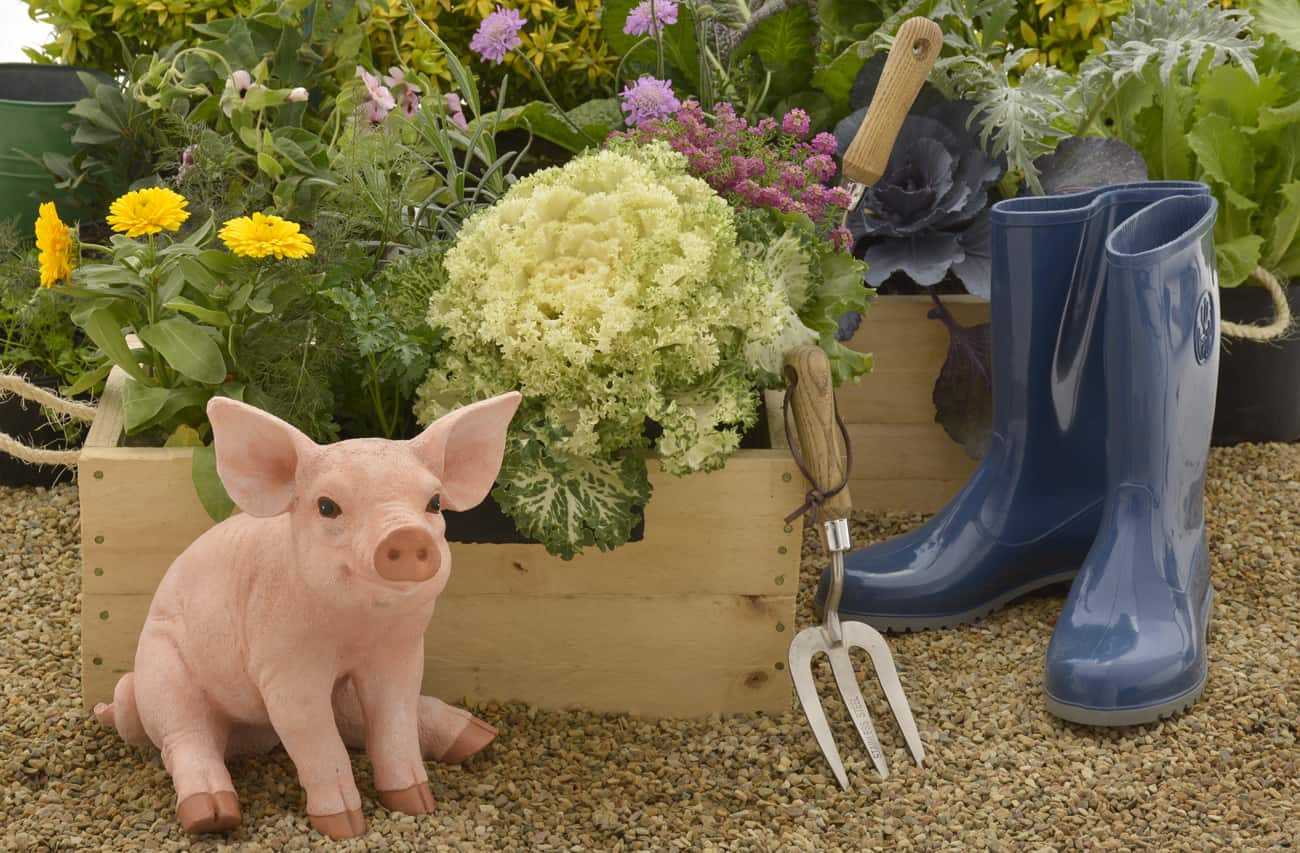 jane griffiths blog potager lifestyle home garden nursery plant shop vegetables flowers herbs kitchen parterre