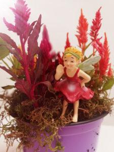 kids korner lifestyle home garden johannesburg gauteng nursery plant shop