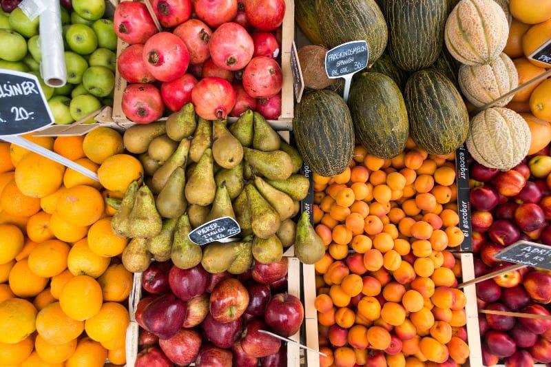 food forest blog sustainability grow your own fresh produce lifestyle home garden nursery plant shop johannesburg gauteng