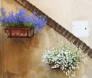 balcony gardening pots planters wall space urban greenie lifestyle home garden nursery plant shop
