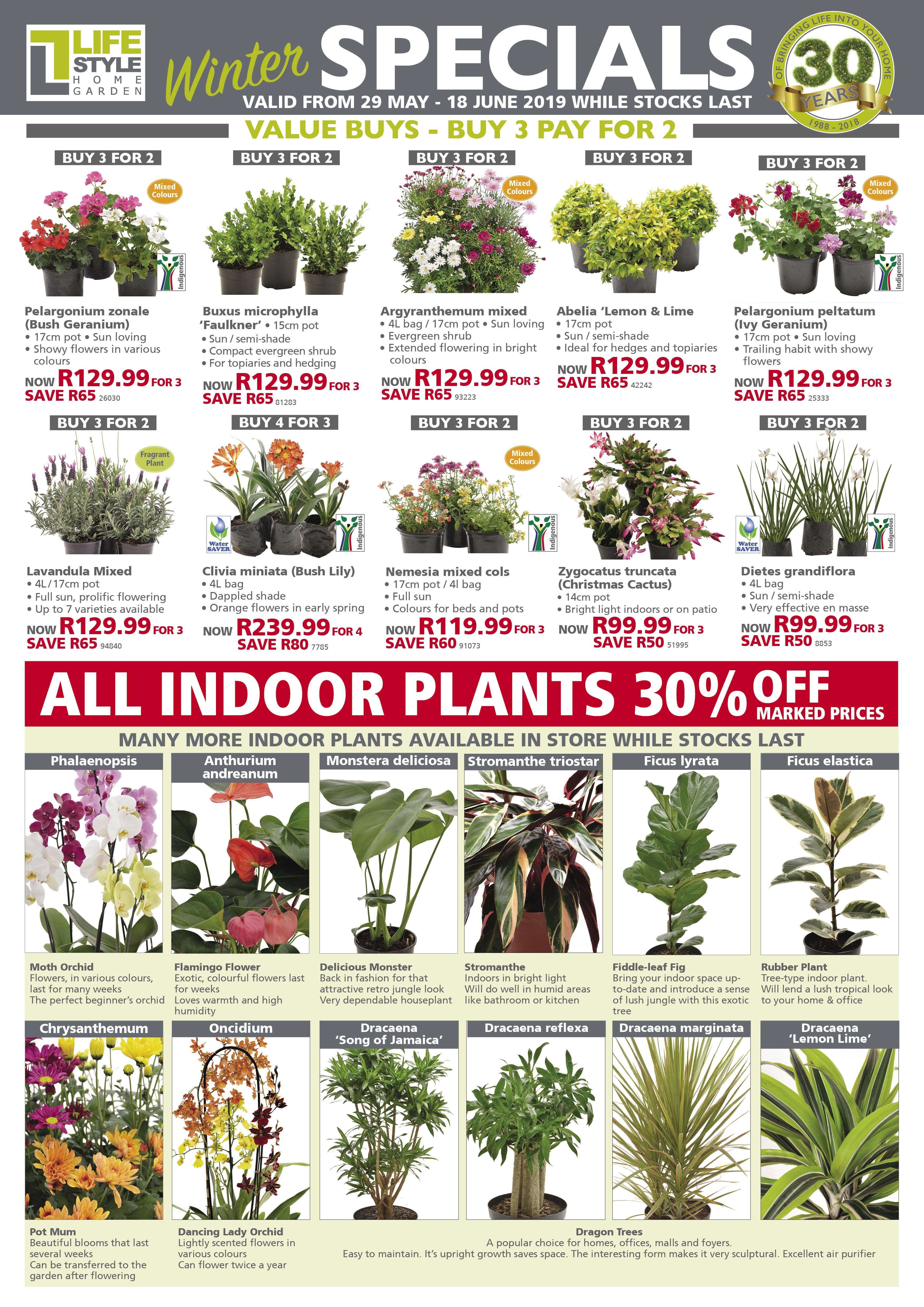 gardening specials lifestyle garden centre specials lifestyle home garden nursery plant shop