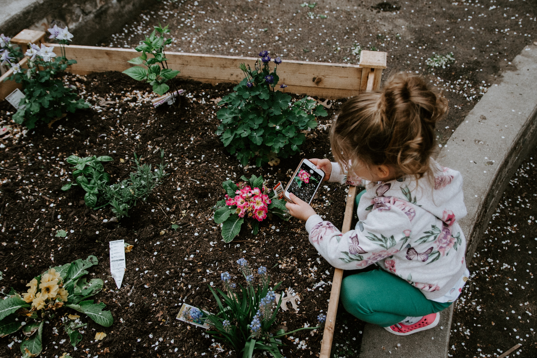 raising gardeners kids korner lifestyle home garden children outdoors education play nurture johannesburg gauteng nursery plant shop