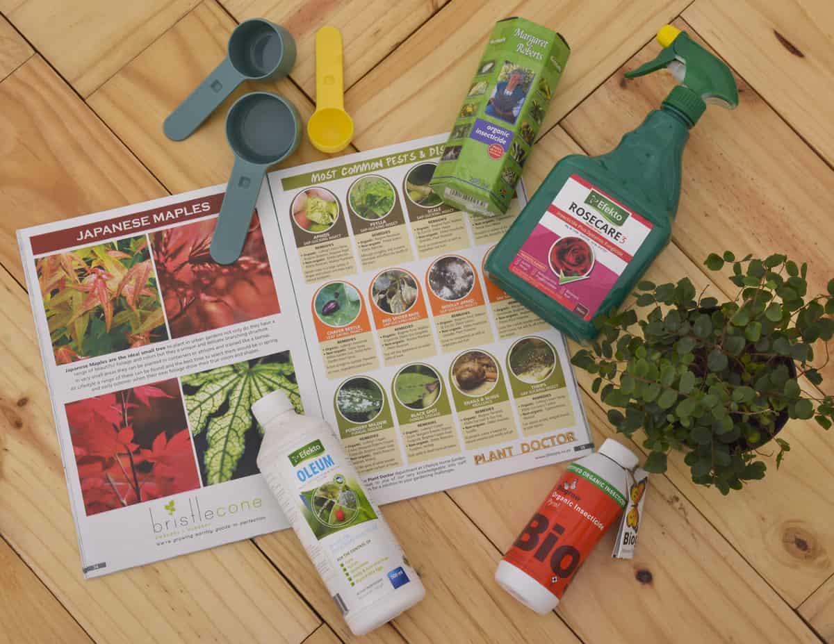 garden pests and diseases lifestyle home garden garden guide