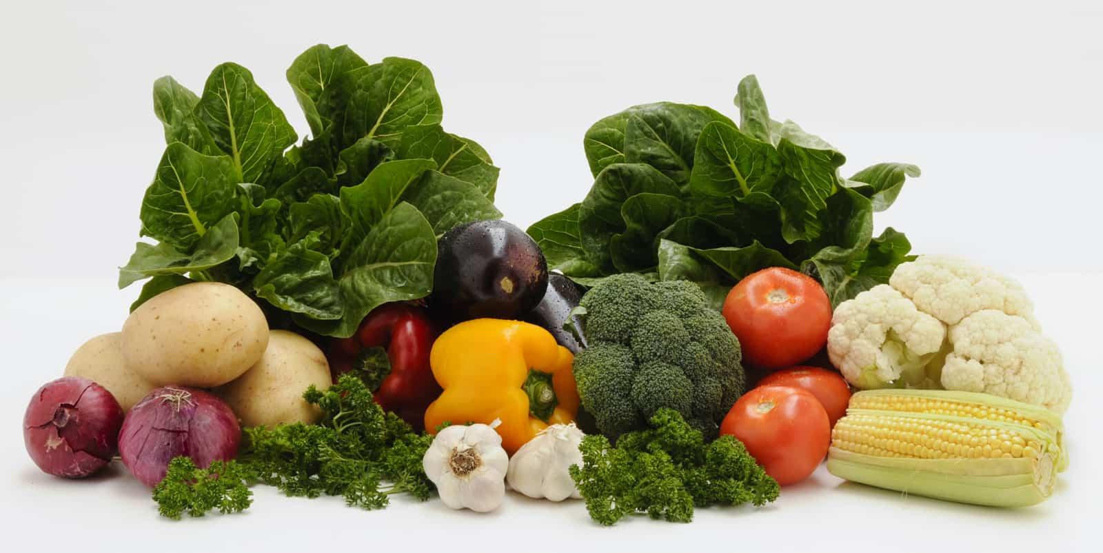 organic your lifestyle gardening lifestyle home garden