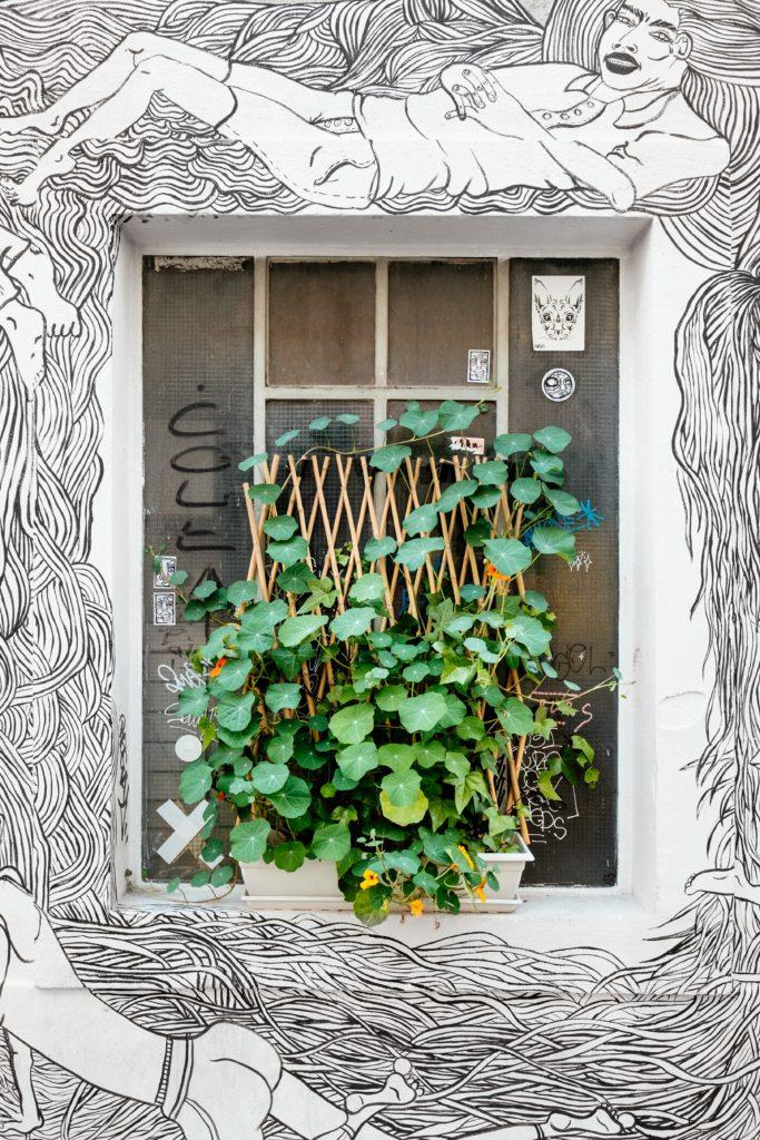 vertical gardening lifestyle home garden nursery plant shop johannesburg gauteng