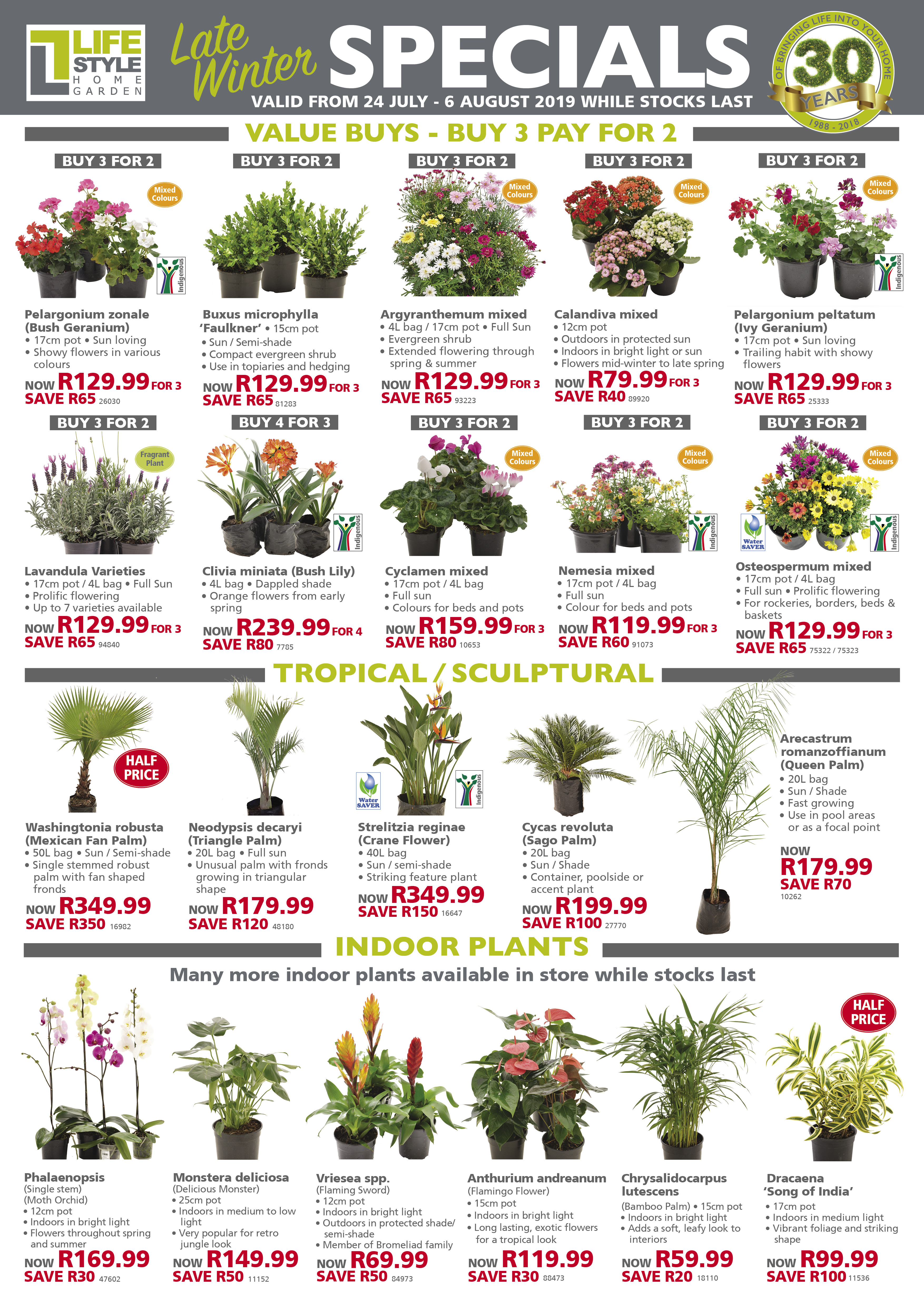 specials lifestyle home garden july winter south africa nursery plant shop johannesburg gauteng
