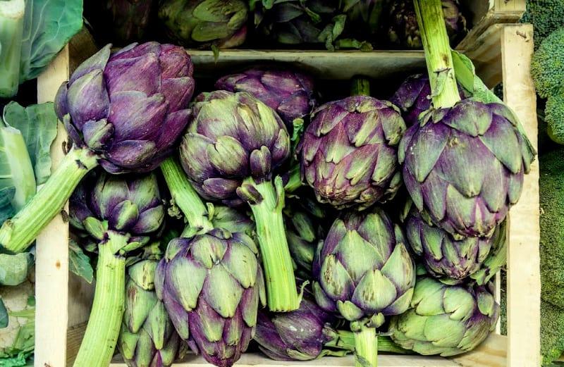 artichokes vegetables lifestyle home garden nursery plant shop grow your own johannesburg gauteng