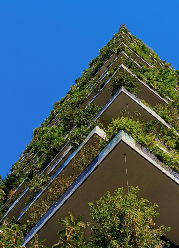 lifestyle home garden urban greenies greening your urban space living johannesburg gauteng nursery plant shop
