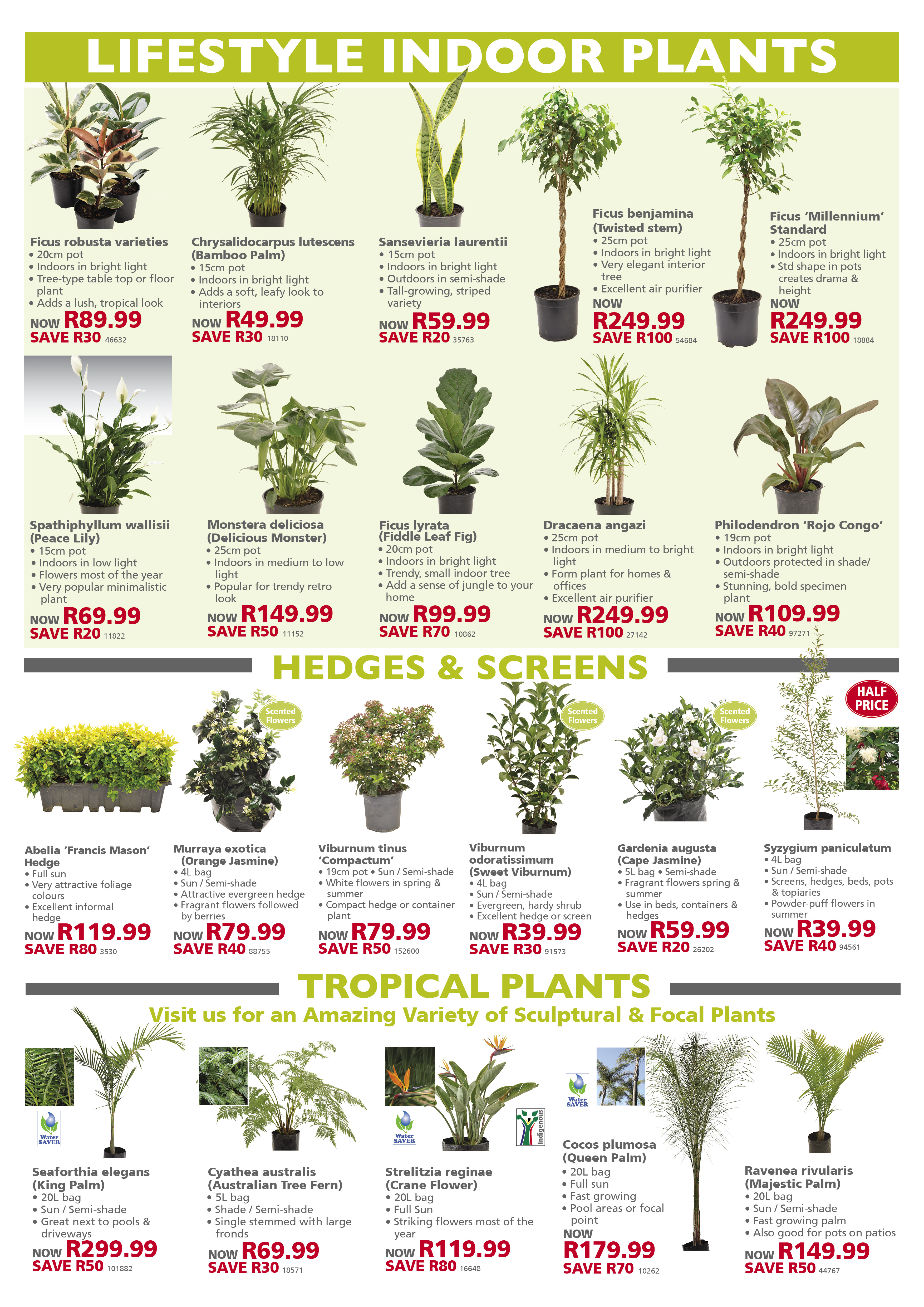 lifestyle home garden leaflet specials august september spring combo deals garden gardening outdoors nursery plant shop