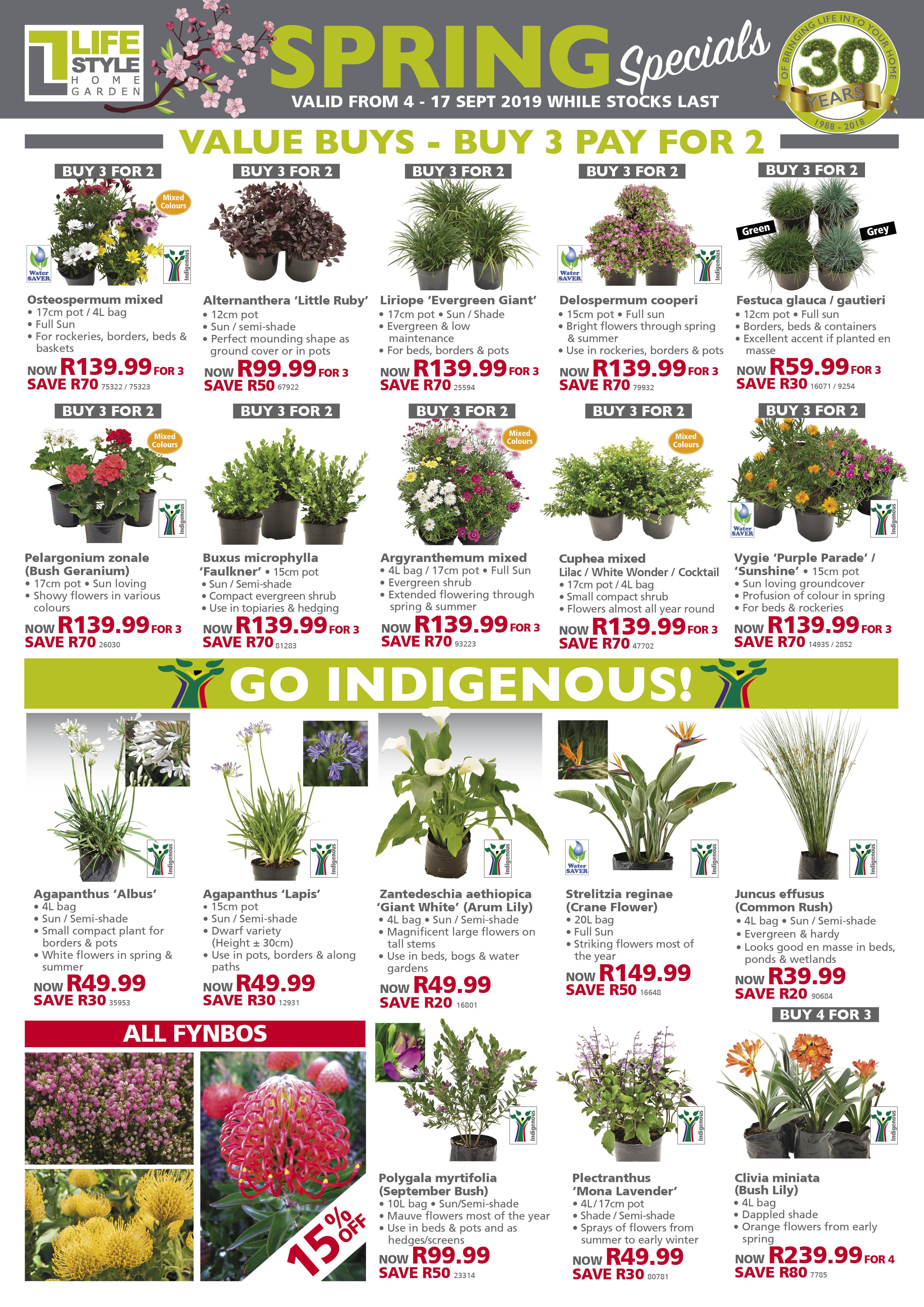 lifestyle home garden leaflet specials indigenous nursery plant shop johannesburg gauteng