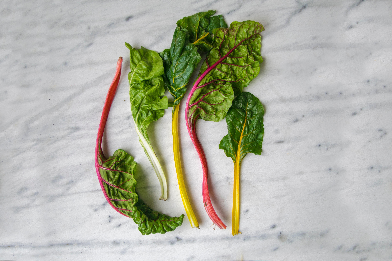 lifestyle home garden nursery plant shop johannesburg gauteng swiss chard vegetables spinach