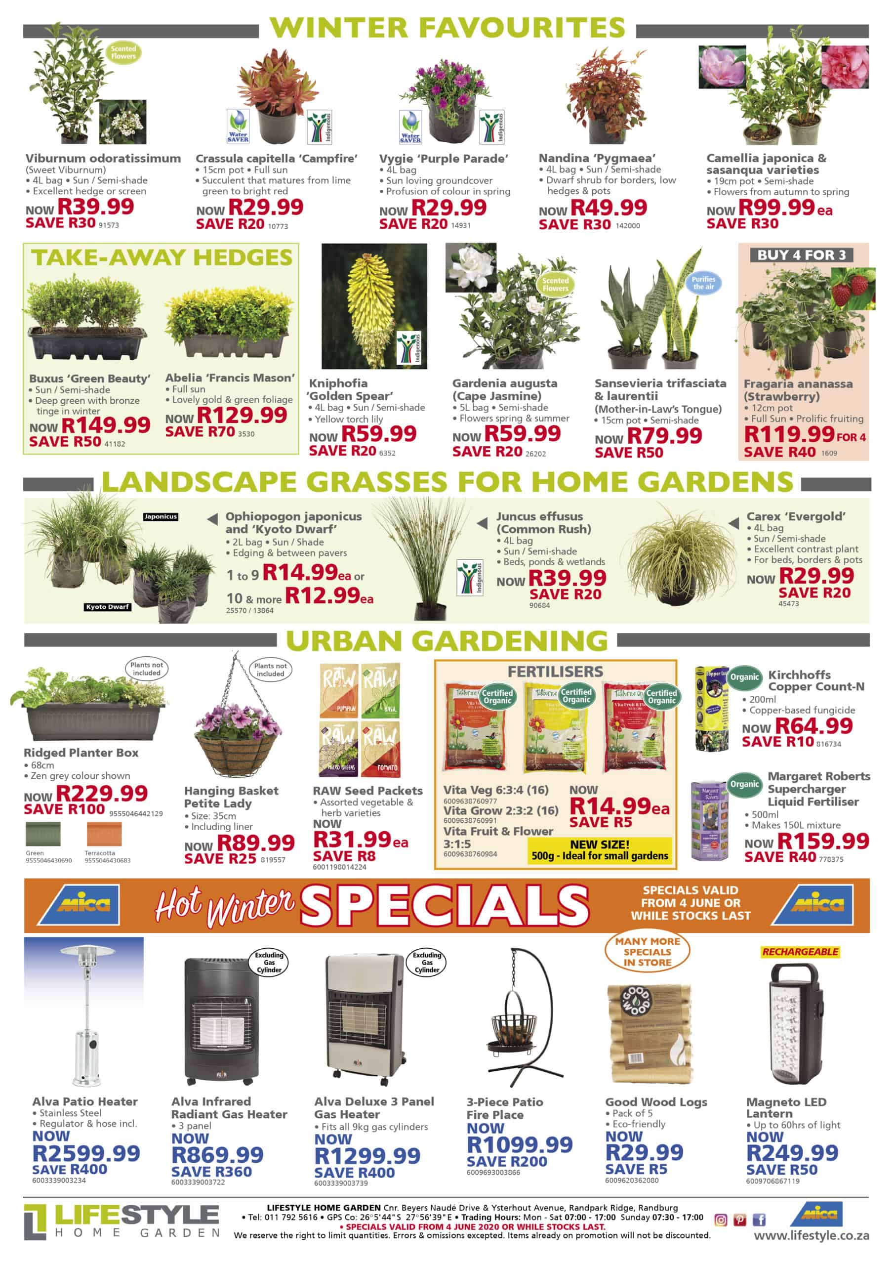 lifestyle home garden nursery plant shop specials june winter indoor plants johannesburg gauteng