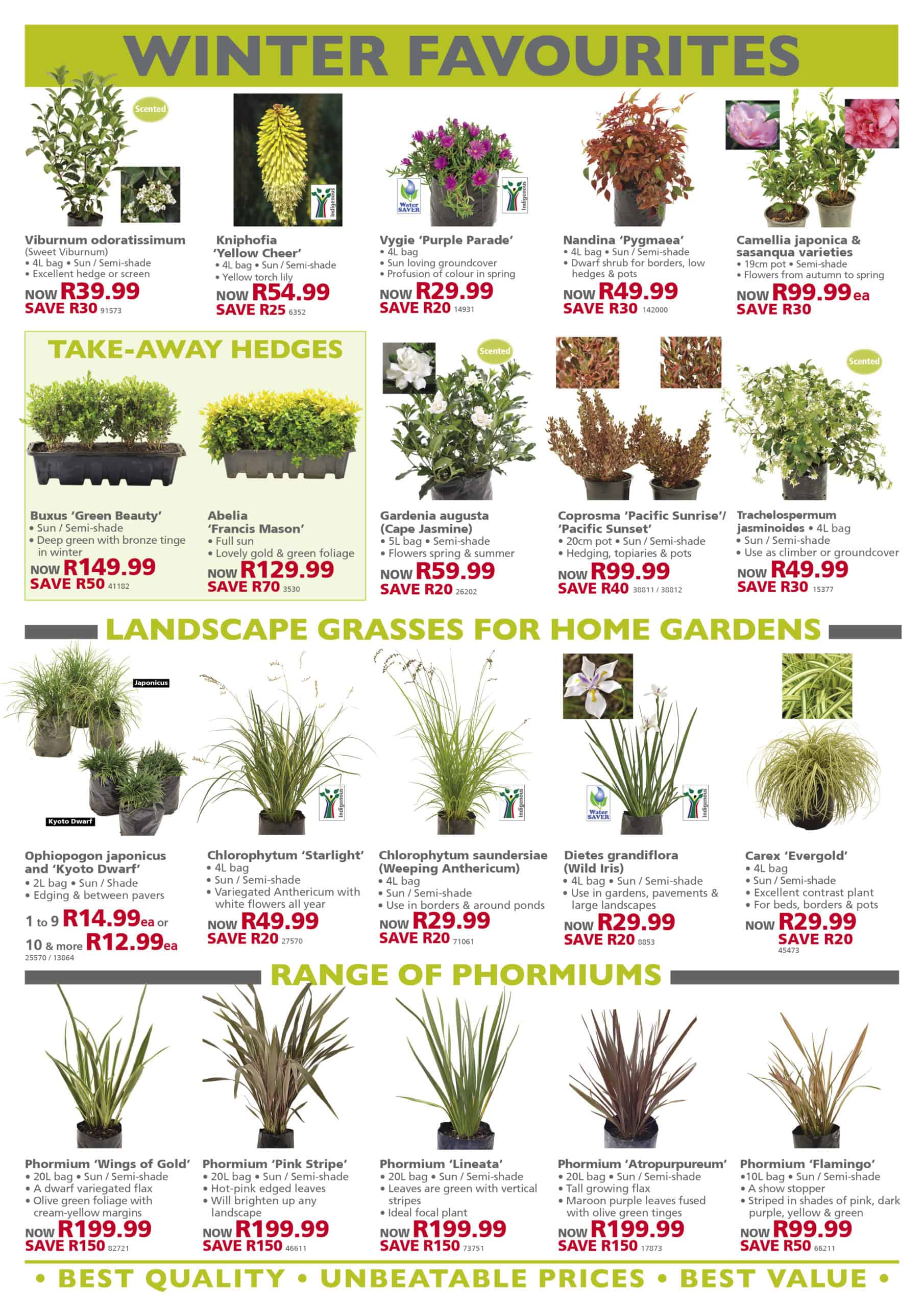 lifestyle home garden leaflet specials june winter nursery plant shop johannesburg gauteng