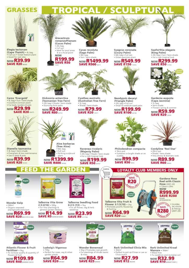 lifestyle home garden spring specials promotions nursery gauteng johannesburg plant shop hot deals