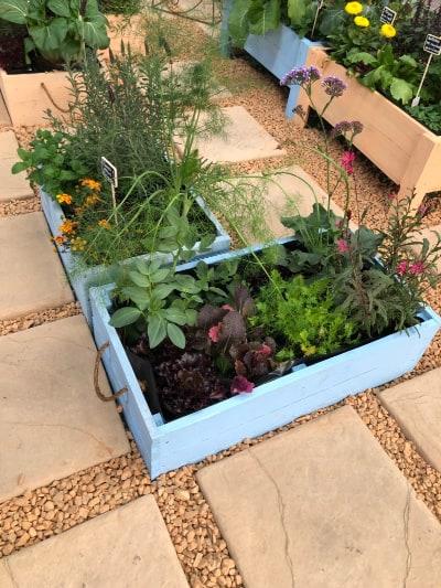 planter box lifestyle home garden nursery plant shop johannesburg gauteng gardening love summer 2021