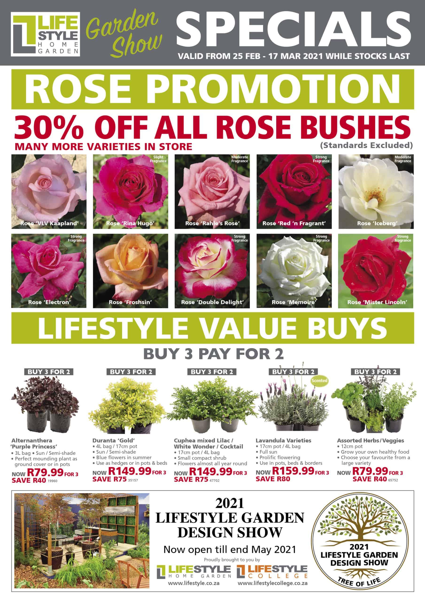 lifestyle home garden leaflet specials autumn nursery plant shop seasonal plants gardening johannesburg gauteng roses rose value promotions